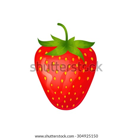 One ripe red strawberry isolated on white background - stock vector