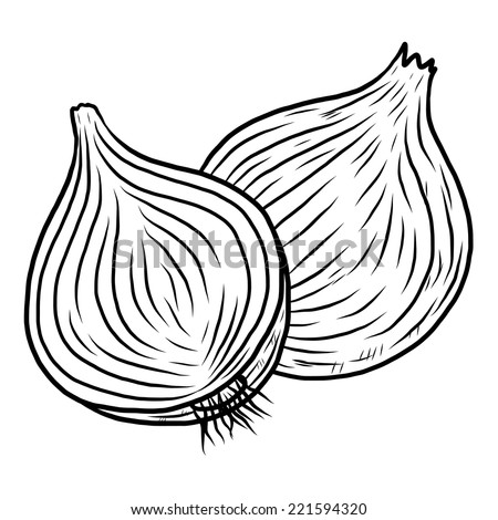 Onion Cartoon Vector Illustration Black White Stock Vector ...