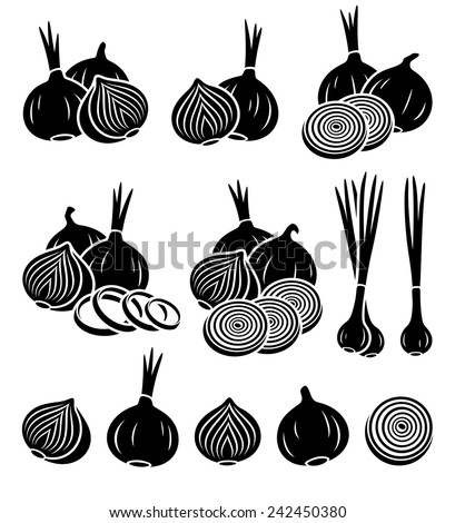 Onion set. Vector - stock vector