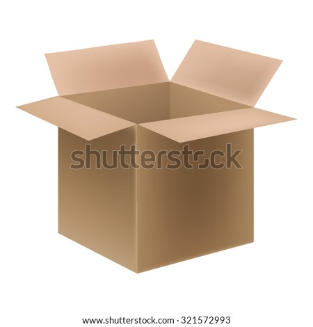 Open cardboard warehouse box.