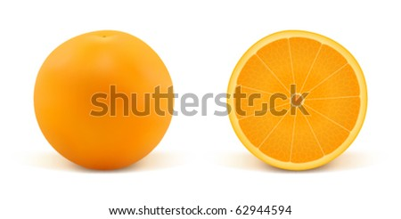 Orange and part of orange on a white background - stock vector