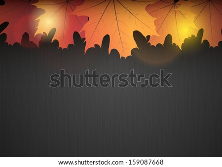 orange autumn leaves on the dark background