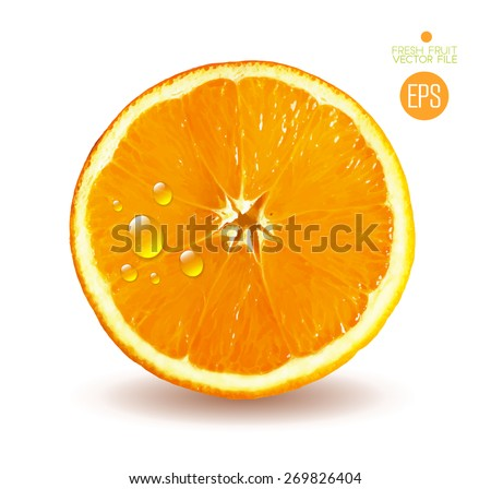 Orange cut in half. Citrus isolated on white background beautiful fresh fruit. Vector realistic art illustration for advertising packaging carton bottle banner wallpaper website. Color yellow colorful - stock vector