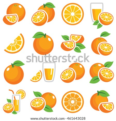 Orange fruit icon collection - color vector