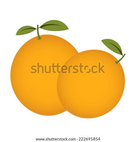 Orange fruit. Orange fruit isolated on a white background. - stock vector
