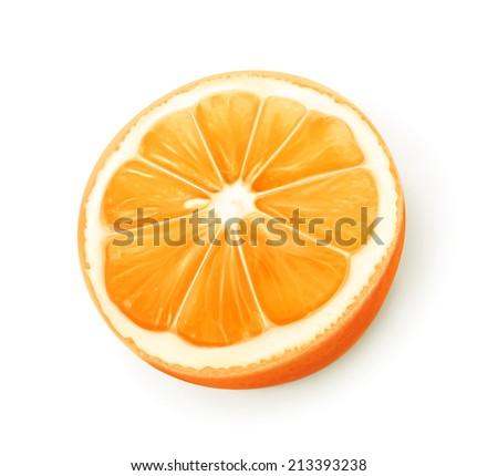 Orange fruit, vector - stock vector