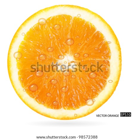 Orange fruit with water drops isolated on white background. Vector illustration. - stock vector