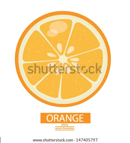 Orange fruits vector illustration