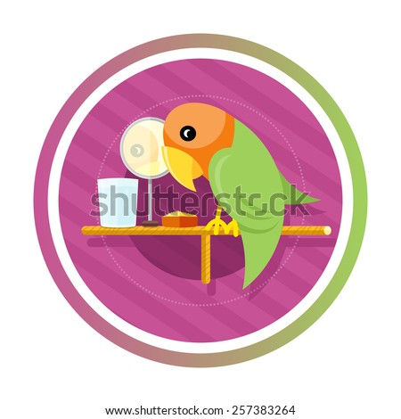 Orange green parrot with a mirror, water and food isolated on white background. Concept in cartoon style - stock vector