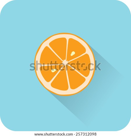 Orange icon. Flat design style modern vector illustration - stock vector
