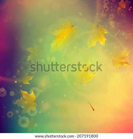 Orange maple leaves. Autumn concept. EPS10 - stock vector