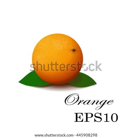 Orange on a white background. Green leaves. Orange color - stock vector