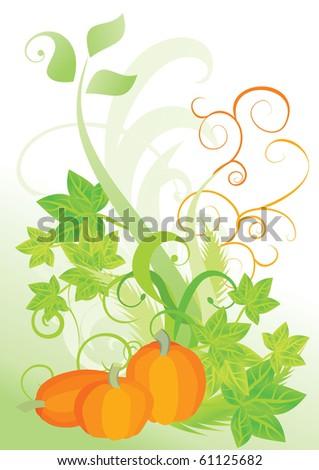 orange pumpkin vegetable with green leaves autumn vector illustration on white background - stock vector