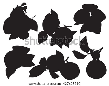 Orange silhouette with leaf