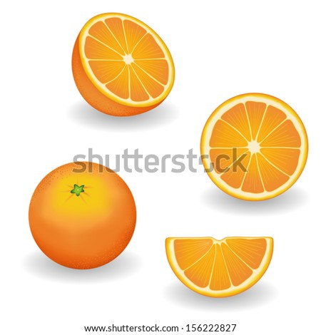Oranges, four views: whole, half, slice, wedge. Fresh, natural, organic, vegetarian food. Graphic illustrations isolated on white background. EPS8 compatible
