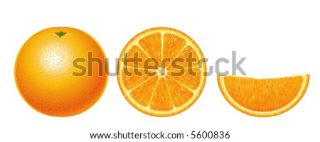 Oranges isolated (complex version, other fruits & berries are in my gallery)