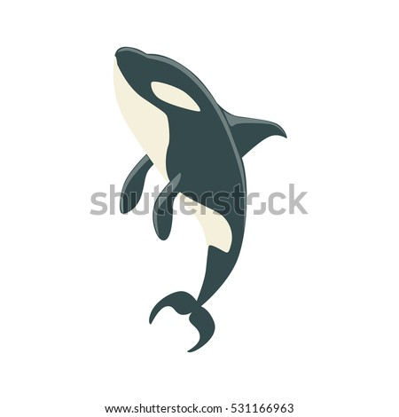 how to draw a killer whale tail