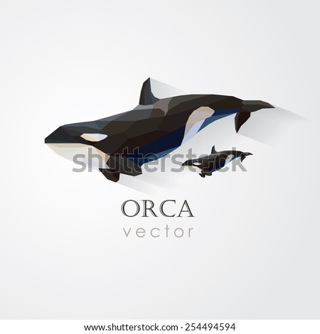 orca killer whale and its baby vector illustration in low poly geometric style- company visual identity - stock vector