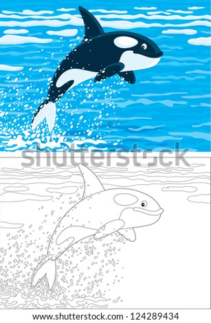 orca leaping out of the water in a polar sea, color and outline illustrations - stock vector