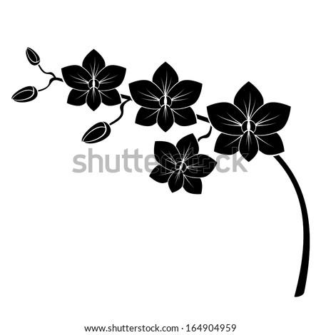 orchid branch silhouette vector design stock vector 164904959 shutterstock. Black Bedroom Furniture Sets. Home Design Ideas
