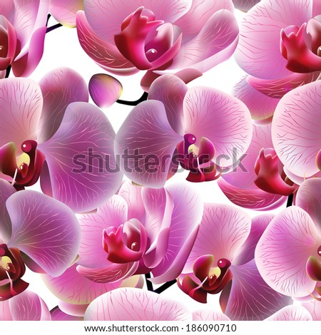 Orchid seamless pattern. Vector illustration, EPS 10 - stock vector