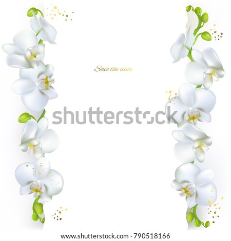 Orchids white flowers tropical plants floral stock vector 2018 white flowers tropical plants floral background border mightylinksfo
