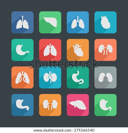 organ icons - stock vector
