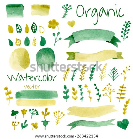 Organic, bio, natural design elements. Vintage vector watercolor set in green colors.  - stock vector
