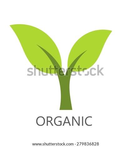 Organic green plan symbol. Vector illustration - stock vector