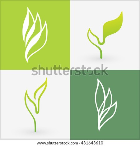 Organic icons elements. Bio set of four differently designed leaves. Sample of vector illustration design. Best used for logos, advertisement, and to promote healthy products. - stock vector