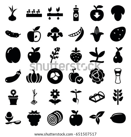 Organic icons set. set of 36 organic filled icons such as leaf, mushroom, hay, potato, onion, peach, mulberry, cabbage, deel, corn, apple, lemon, energy drink, cucumber