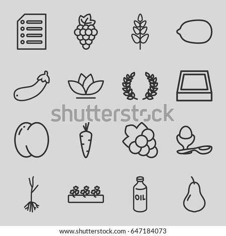 Organic icons set. set of 16 organic outline icons such as carrot, pear, peach, grape, oil, lemon, grape, boiled egg, flower, sprout plants, sprout, aubergine, plant, paper