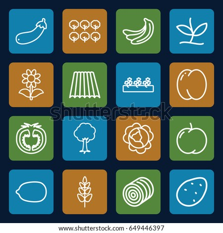 Organic icons set. set of 16 organic outline icons such as field, hay, potato, peach, apple, banana, cabbage, tree, lemon, flower, sprout plants, aubergine, tomato