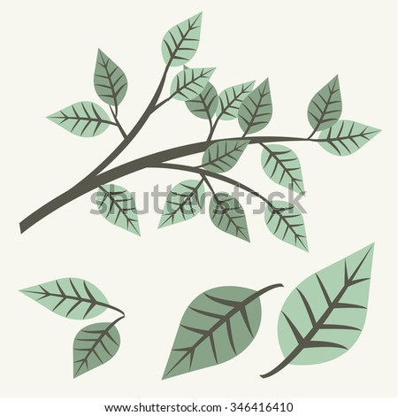organic. Vector badge with green decorative leaves
