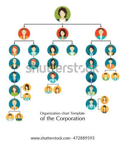 organizational chart template corporation business hierarchy เวก