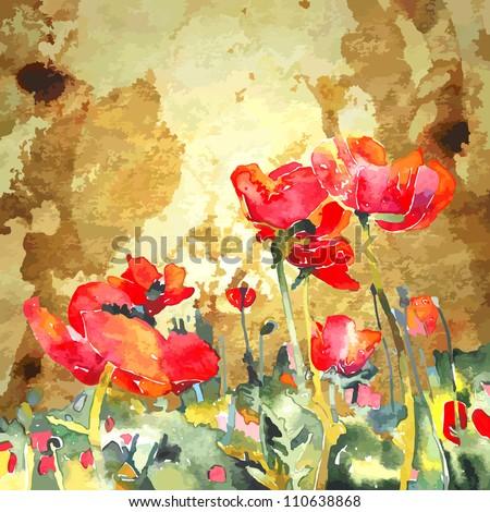 original watercolor poppy flower in gold background - stock vector