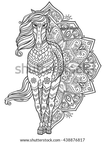 Horse Head Coloring Page Stock Images Royalty Free Images
