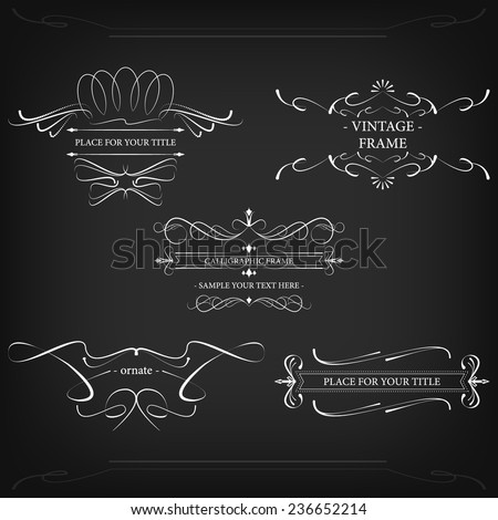Ornate vintage frames with decorative lines and retro elements/vintage vector illustration - stock vector