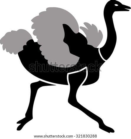 Ostrich running in two colors