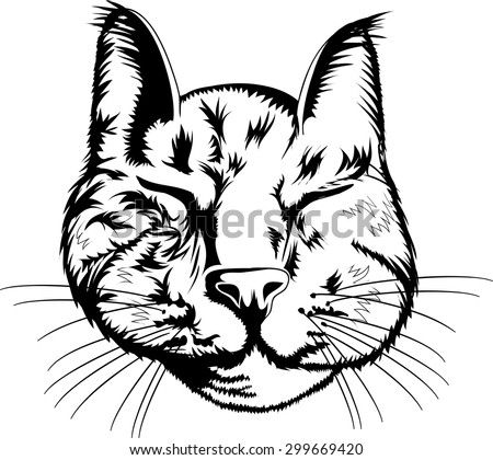 outline sleeping cat on white background