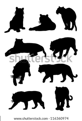 outlines nine tiger on a white background