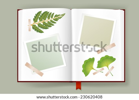 Overhead view of opened photo album with scraps of blank photo frames clipped on it and dried leaves of fern and ginkgo. Scrapbook or herbarium book template. Copy space. Vector is EPS10. - stock vector