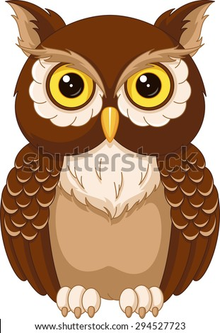 Owl Stock Images Royalty Free &amp Vectors  Shutterstock