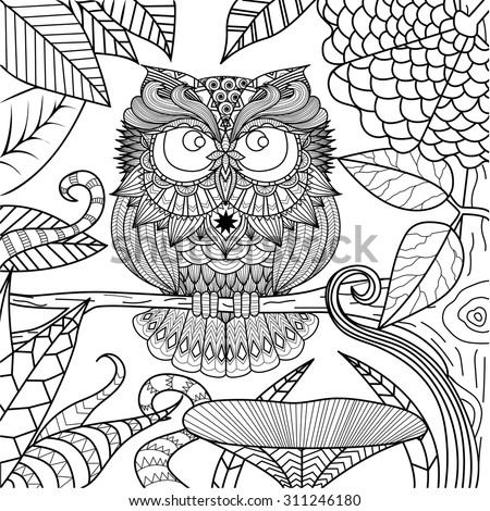 Owl Drawing Coloring Book Stock Vector 311246180 - Shutterstock