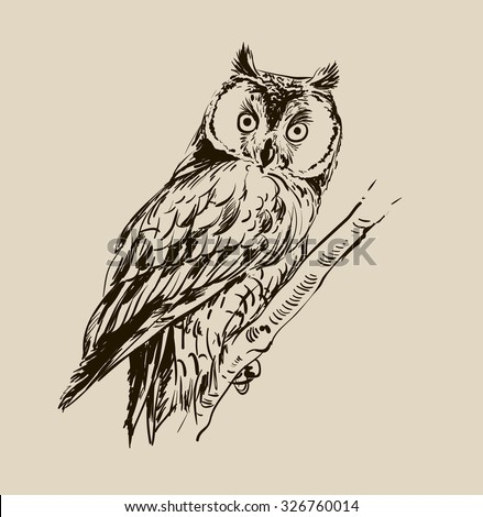 owl graphic black white stock vector 265113569 shutterstock