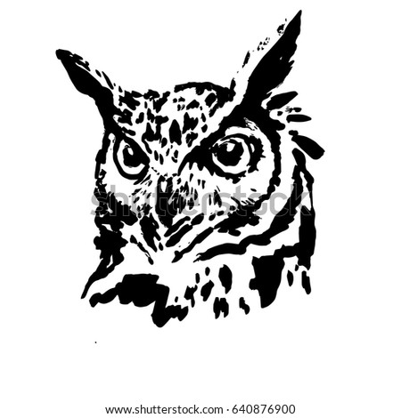 owl black and white stock images royaltyfree images