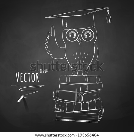 Owl sitting on books. Chalkboard drawing. Vector illustration. - stock vector