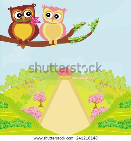 owls in love , sweet card design.  - stock vector