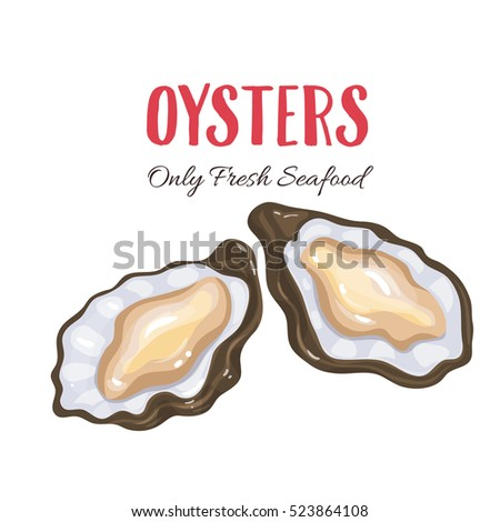 Oysters vector illustration in cartoon style. Seafood product design.