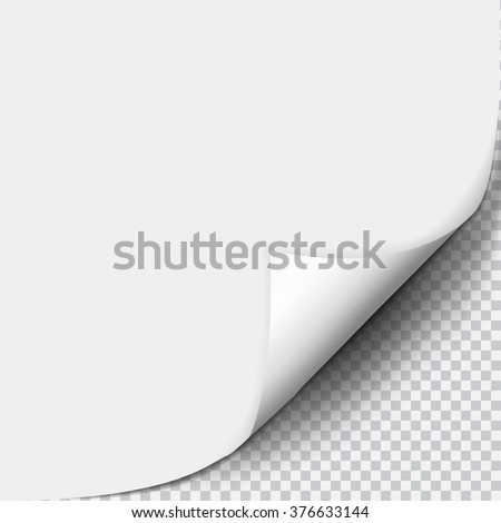 Page curl with shadow on blank sheet of paper - stock vector